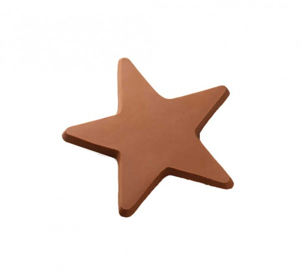 Täfelchen Stern L